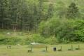 mount-adams-gun-club-2010-05-10-19-07-56-dsc_5484