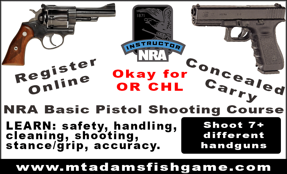NRS Pistol Shooting and Concealed Carry course